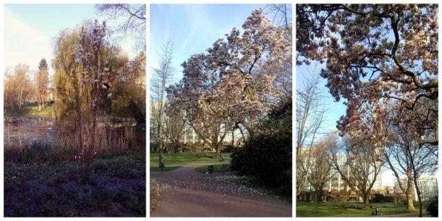 Collage Morgen im Park_klein
