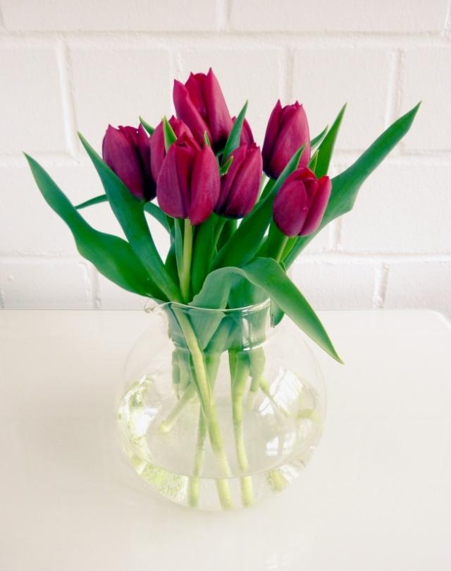 Tulpen_klein