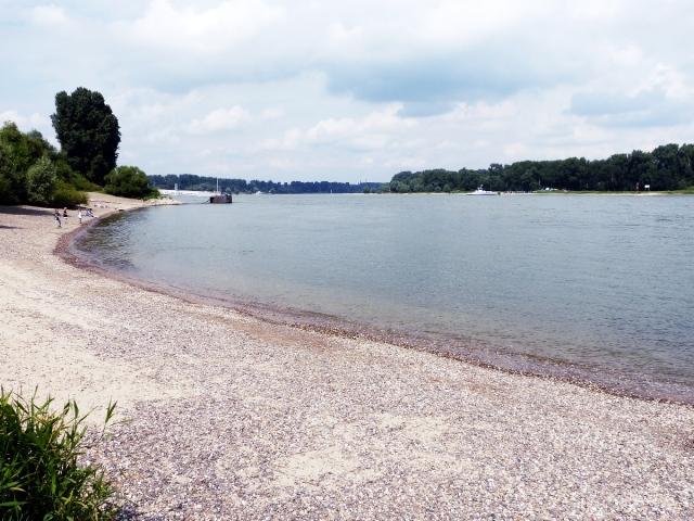 Wasser_Rhein
